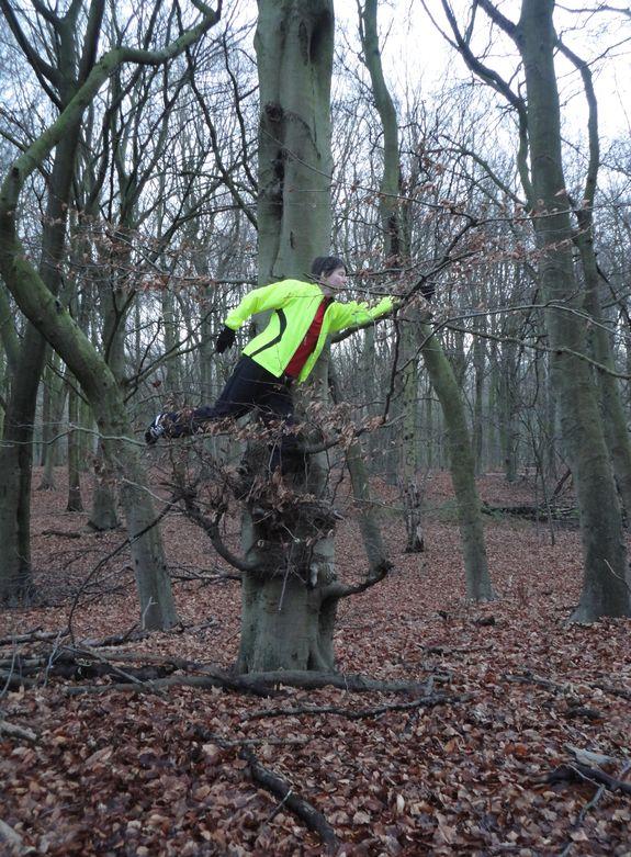 Doe es een boom 1