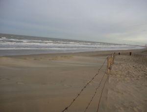strand, Bloemendaal bij zee en windkracht veel