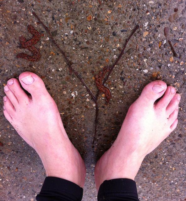 Y blote voeten met tak